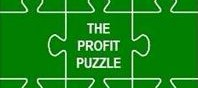 The Profit Puzzle of Business
