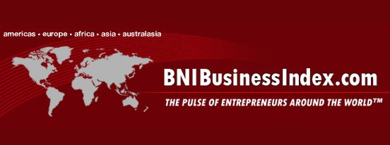 BNI Business Index Results for 2013